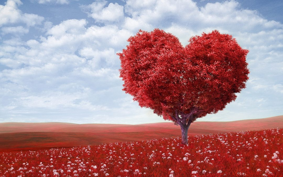 Love Spells